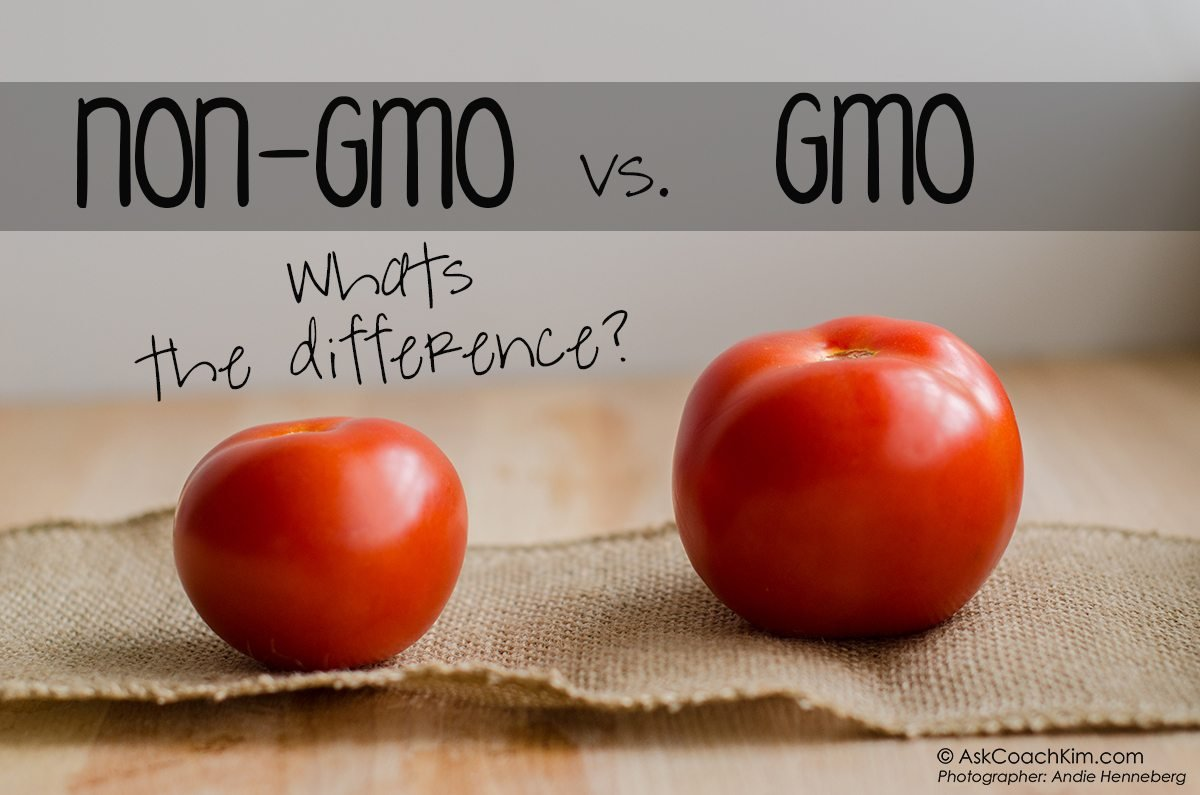 Fear No More, Genetically Engineered Foods Are Safe To Eat! - Scientists